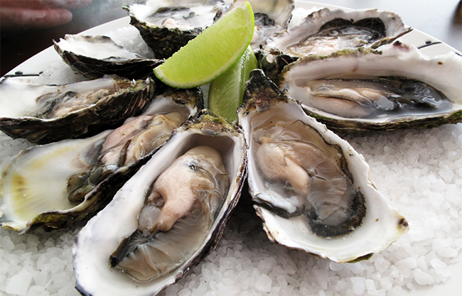 Oysters - Diets For Men