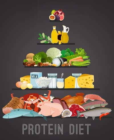 A colourful illustration with different food types