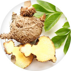 An image of glucomannan