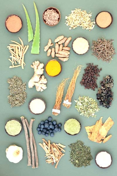 An image of ashwaganda food collection with herbs, spices, fruit and supplement powders