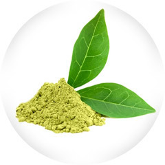 An image of green tea