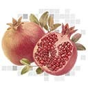 An image of Pomegranate.